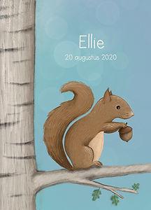 #geboortekaartje #eekhoorn #dier #gebooortekaartjedier #ellie #bos #bosdier #woodland #birthcard #forest #babykaart #illustratie #geboortekaartjeopmaat #zomer #boom #eehoornoptak