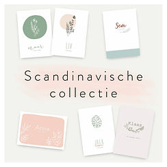 scandinavische collectie.jpg