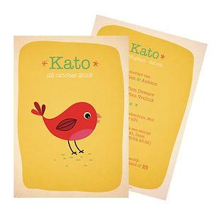 Je vindt hier een kleurrijk geboortekaartje met een schattige, rode vogel. De geboortekaartjes zijn ontworpen door illustrator Karen Vandelaer.