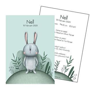 Je vindt hier een geboortekaartje met een schattig konijntje tussen de plantjes. De geboortekaartjes zijn ontworpen door illustrator Karen Vandelaer.