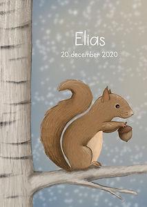 #geboortekaartje #eekhoorn #dier #gebooortekaartjedier #elias #sneeuw #snow #sneeuwlandschap #bos #bosdier #woodland #birthcard #forest #babykaart #illustratie #geboortekaartjeopmaat #winter #boom #eehoornoptak