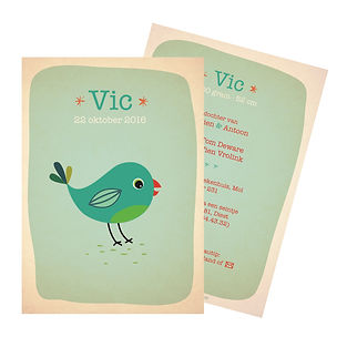 Je vindt hier een geboortekaartje met een kleurrijke, blauwe turkuoise vogel. De geboortekaartjes zijn ontworpen door illustrator Karen Vandelaer.