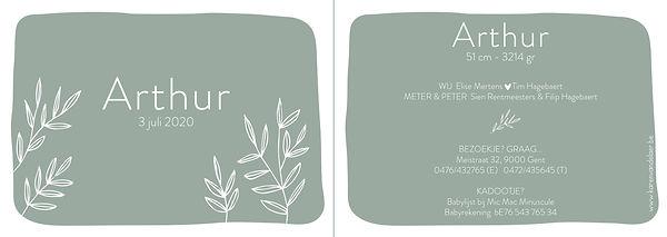 Je vindt hier een Scandinavisch geboortekaartje met een bosje handgetekende, dunne takken. Een botanisch kaartje op een grijs, groene achtergrond.