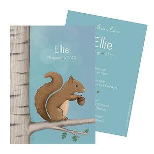 Je vindt hier een fris, zomers geboortekaartje met een lieve, guitige eekhoorn in een boom. De geboortekaartjes zijn ontworpen door illustrator Karen Vandelaer.