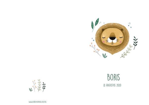 Geboortekaartje leeuw, buitenkant