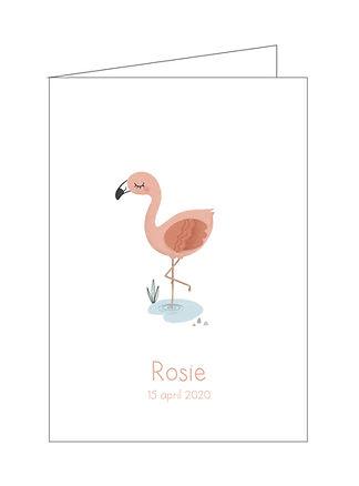 geboortekaartje Rosie, flamingo, plantjes