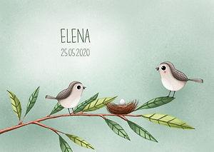 Je ziet hier een geboortekaartje met twee vogeltjes bij een nestje op een tak. Lieve, schattige geboortekaartjescollectie Elena.