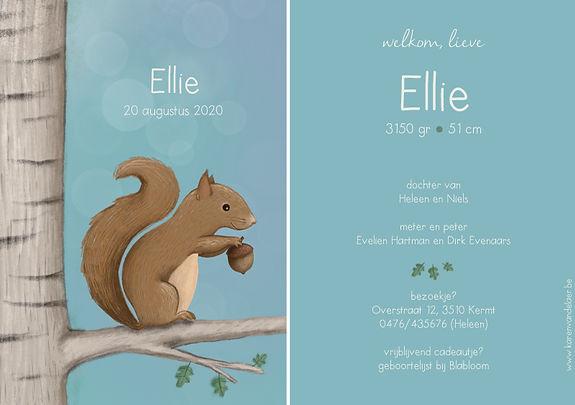 Je vindt hier een fris, zomers geboortekaartje met een lieve, guitige eekhoorn in een boom. Handgetekend - grote versie.