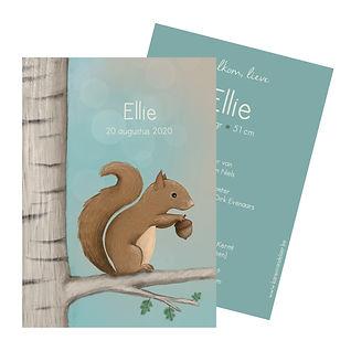 #geboortekaartje #eekhoorn #zwanger #zomer #lente #birdcard #geboortekaartjeopmaat #birthannouncement #illustrator #Diest #ellie