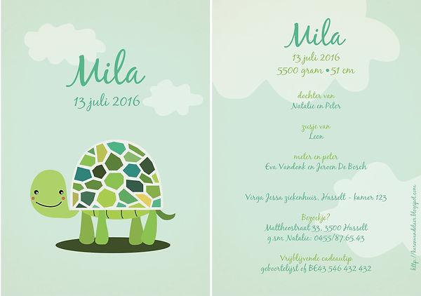 Je vindt hier een groen-blauw geboortekaartje met een lieve schildpad tussen de wolken. Vrolijke schildpad met roze wangetjes - grote versie