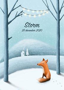 #geboortekaartje #geboortekaartjeopmaat #vo #vsje #birthcard #babykaart #fox #sneeuw #snow #sneeuwlandschap #storm #illustratie #bergen