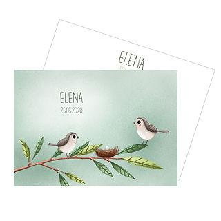 Hier zie je een geboortekaartje met twee schattige vogeltjes op een dun takje, die wachten op een ei.