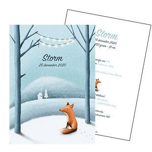 Je vindt hier een geboortekaartje met een lief vosje in een sneeuwlandschap. De geboortekaartjes zijn ontworpen door illustrator Karen Vandelaer.