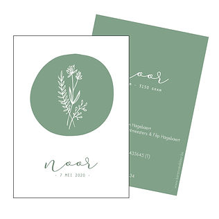 Je vindt hier een Scandinavisch geboortekaartje met  een bosje lijngetekende planten. Een botanisch kaartje op een groene achtergrond. De geboortekaartjes zijn ontworpen door illustrator Karen Vandelaer.