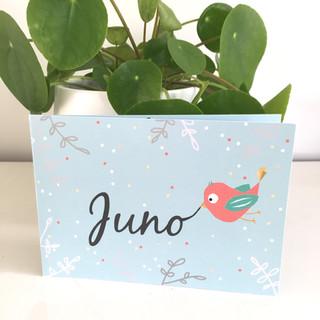 Juno geboortekaartje
