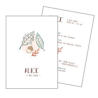 Je vindt hier een geboortekaartje voor het najaar met   herfstbladeren en een eikel op een roze achtergrond. Een Scandinavisch kaartje met fijn lijnwerk. De geboortekaartjes zijn ontworpen door illustrator Karen Vandelaer.