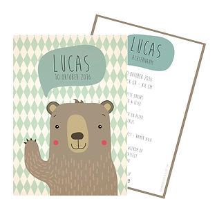 Je vindt hier een geboortekaartje met lieve beer op een retro ruitjes achtergrond. De geboortekaartjes zijn ontworpen door illustrator Karen Vandelaer.
