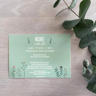 geboortekaartje Nore plantjes