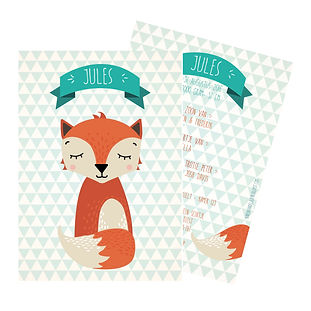 Je vindt hier een geboortekaartje met een slapend vosje op een oud blauwe driehoekjes achtergrond. De geboortekaartjes zijn ontworpen door illustrator Karen Vandelaer.