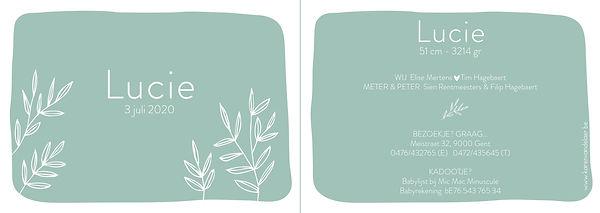 Je vindt hier een Scandinavisch geboortekaartje met  een bosje handgetekende plantjes. Een botanisch kaartje op een mint, munt, turquoise achtergrond.