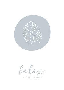 Geboortekaartje geboortekaart newborn zwanger illustratie illustration birthannouncement kindjeopkomst karen vandelaer birthcard babycard ontwerp maatwerk geboortekaartje op maat 20 weken zwanger 20 weeks pregnant babykaart baby ontwerpen kaartje scandinavisch lijntekening floral botanisch bloemen planten plants botanic felix monsterblad monsterplant