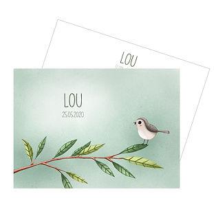 Geboortekaartje met een vogeltje op een tak. Illustratieve collectie, Lou.
