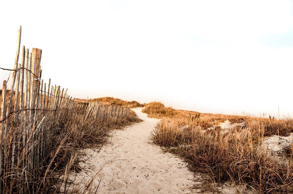 beach-962787.jpg