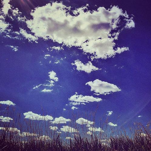 Land & Sky