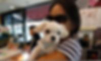 Screen Shot 2019-04-20 at 9.52.09 PM.png