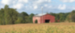 Picture of a red barn in a field, located on a farm in Trimble County