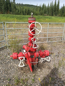 Wellhead Pic For Valve Maintenance Page.