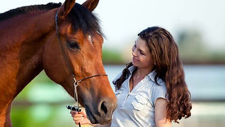Equine Asssted Psychtherapy