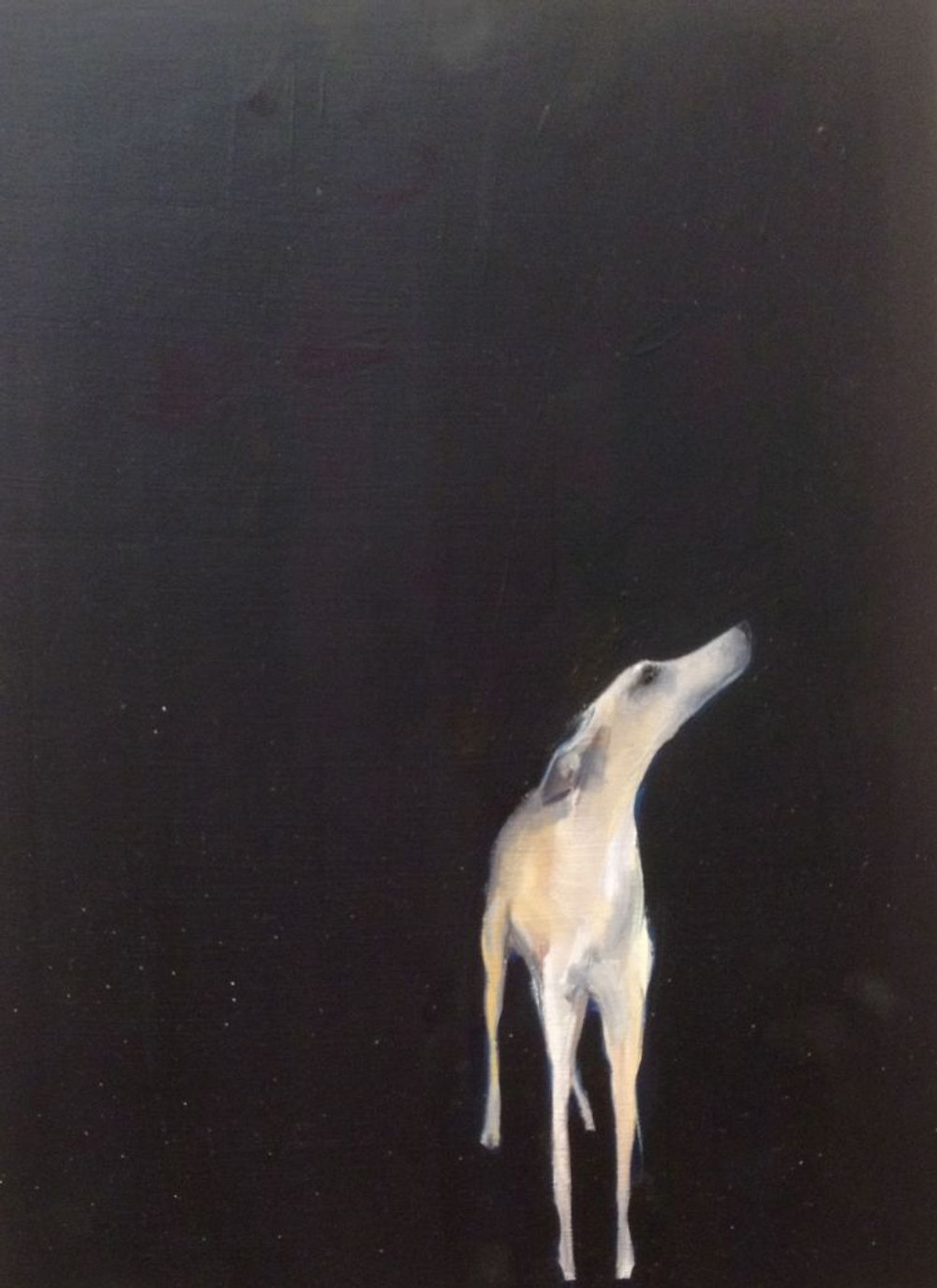 Dog, Sally Muir, Oil on canvas, 2014