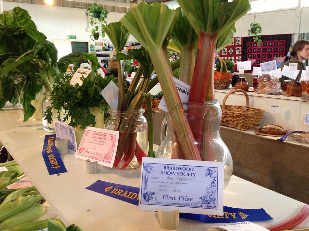 Prize winning rhubarb