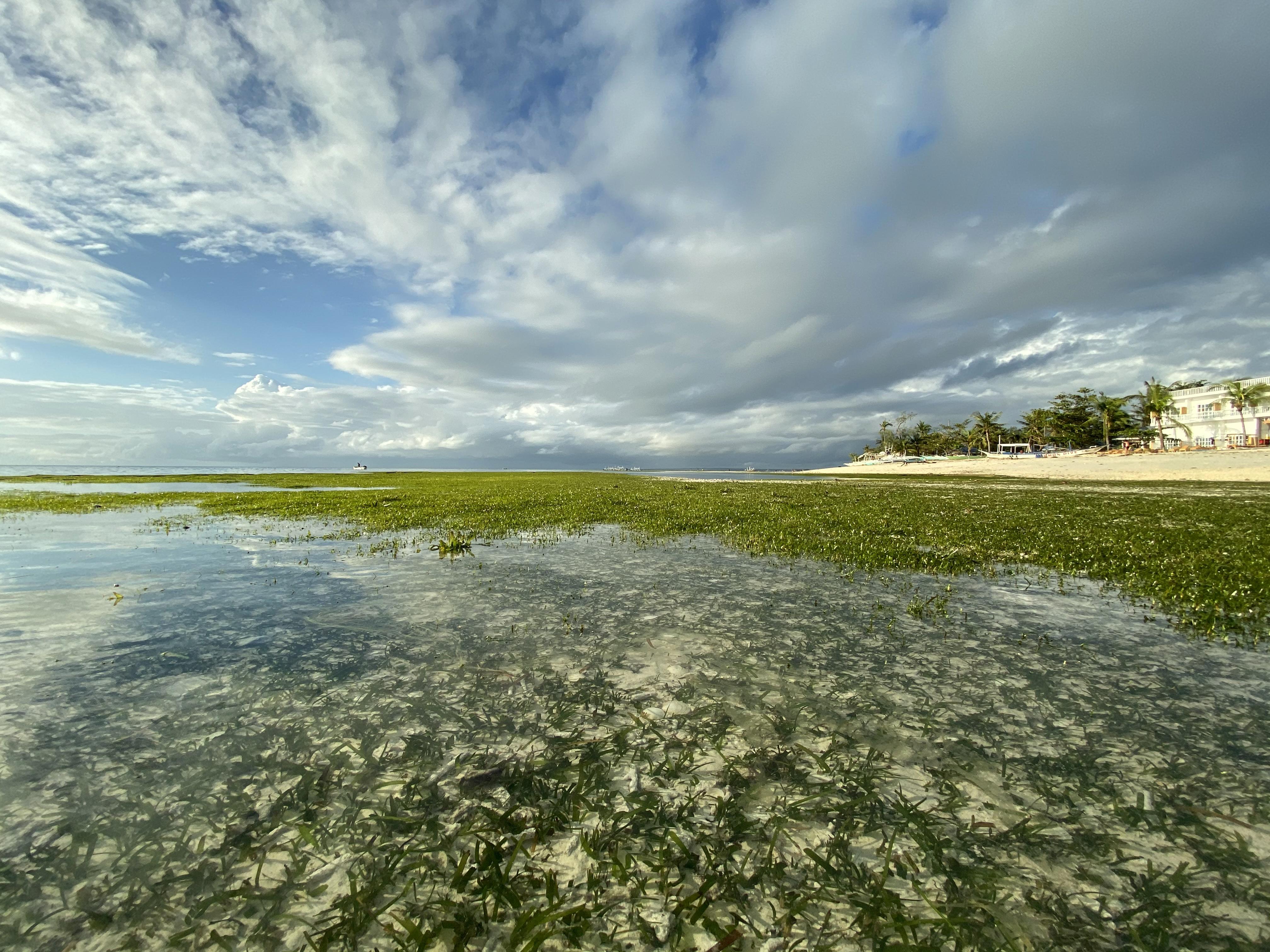 Low tide_Exotic Dive Resort