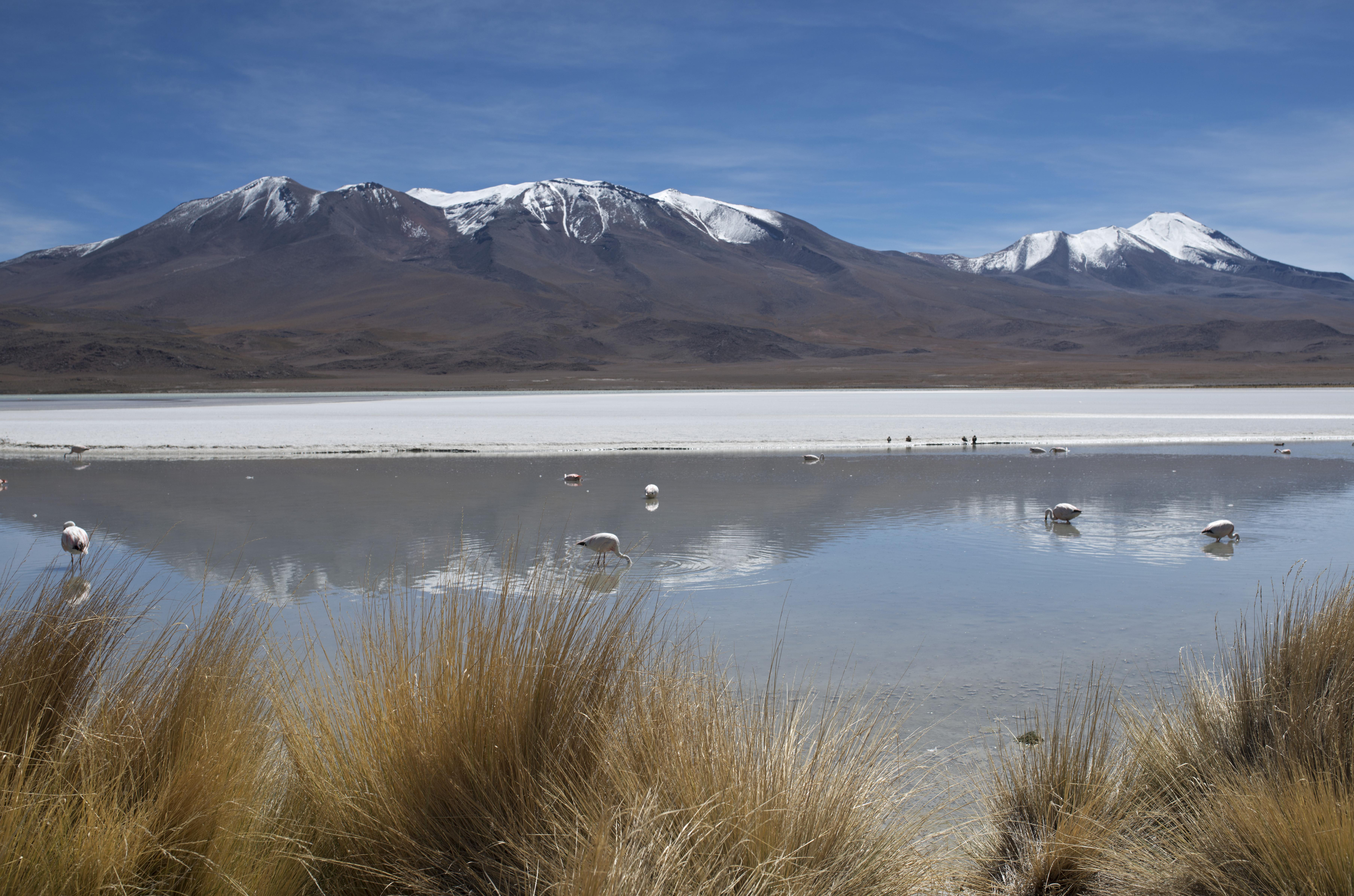 Laguna Charcota_3