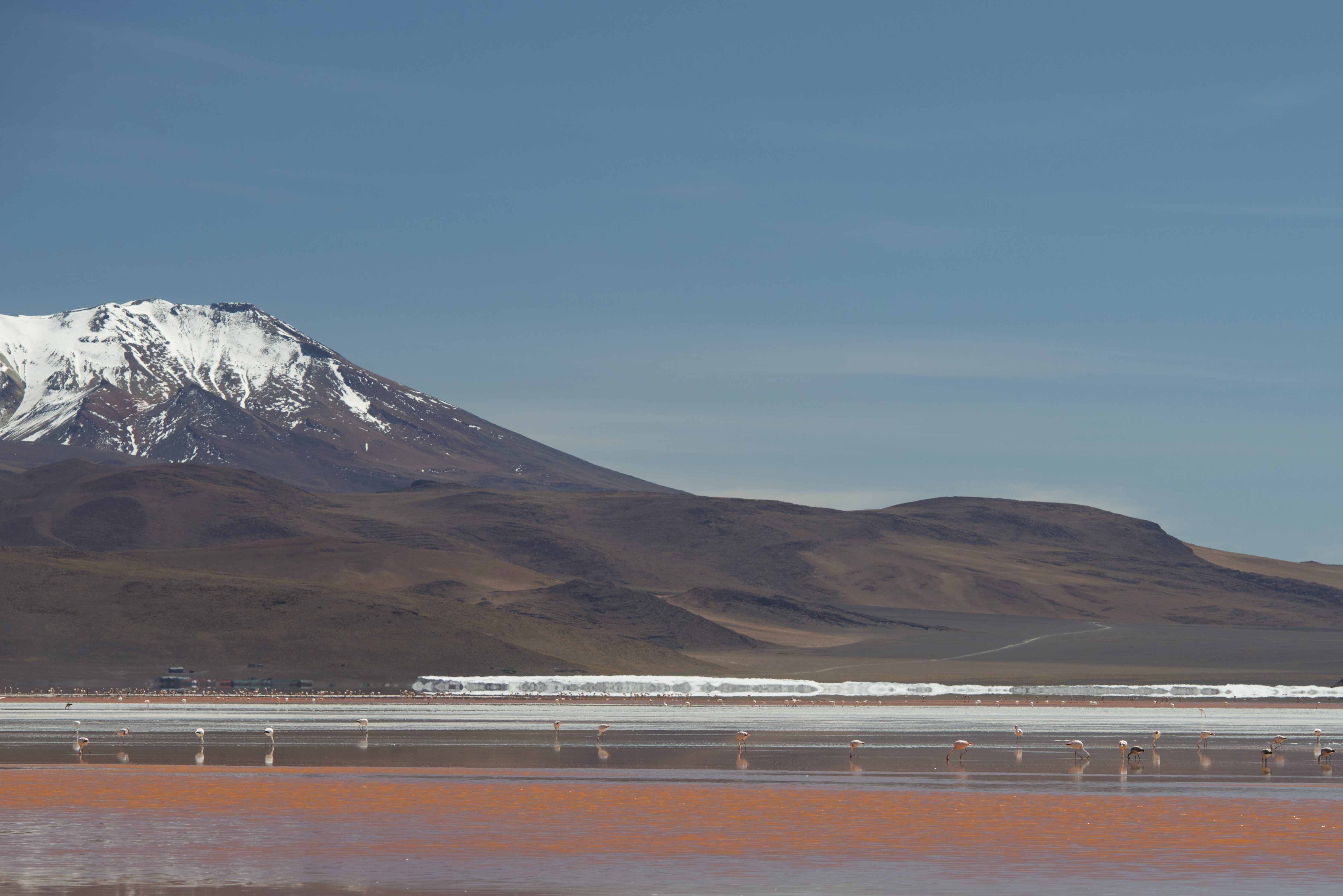 Laguna Colorada_10