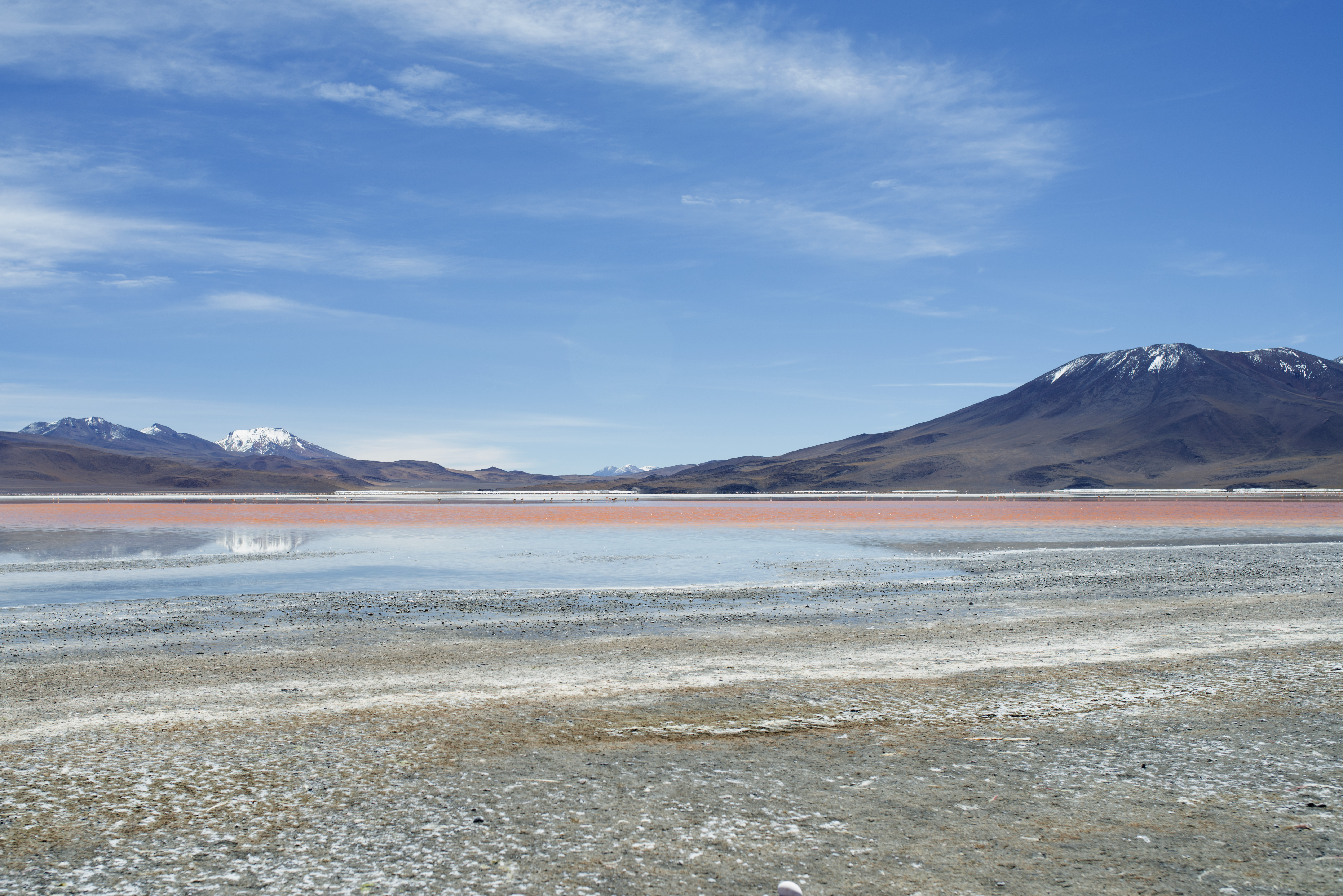 Laguna Colorada_8