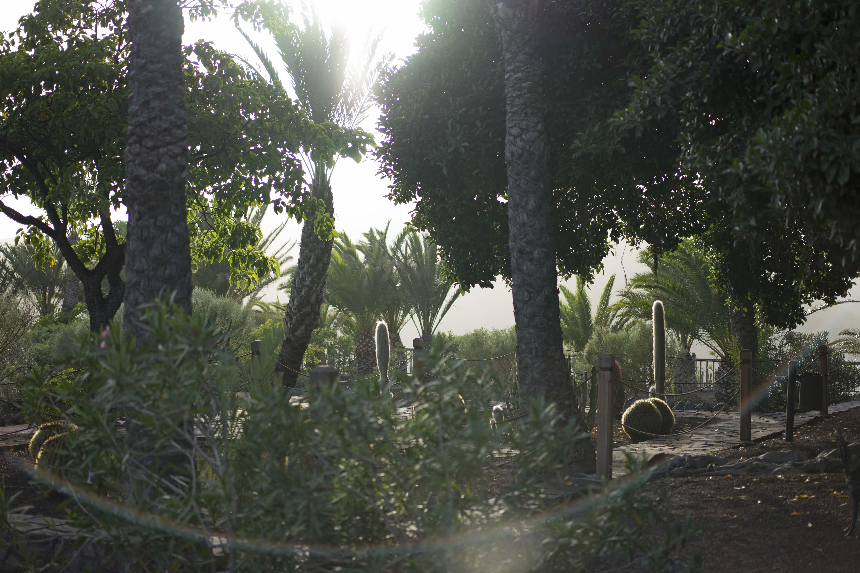 Parador_LaGomera_Garden