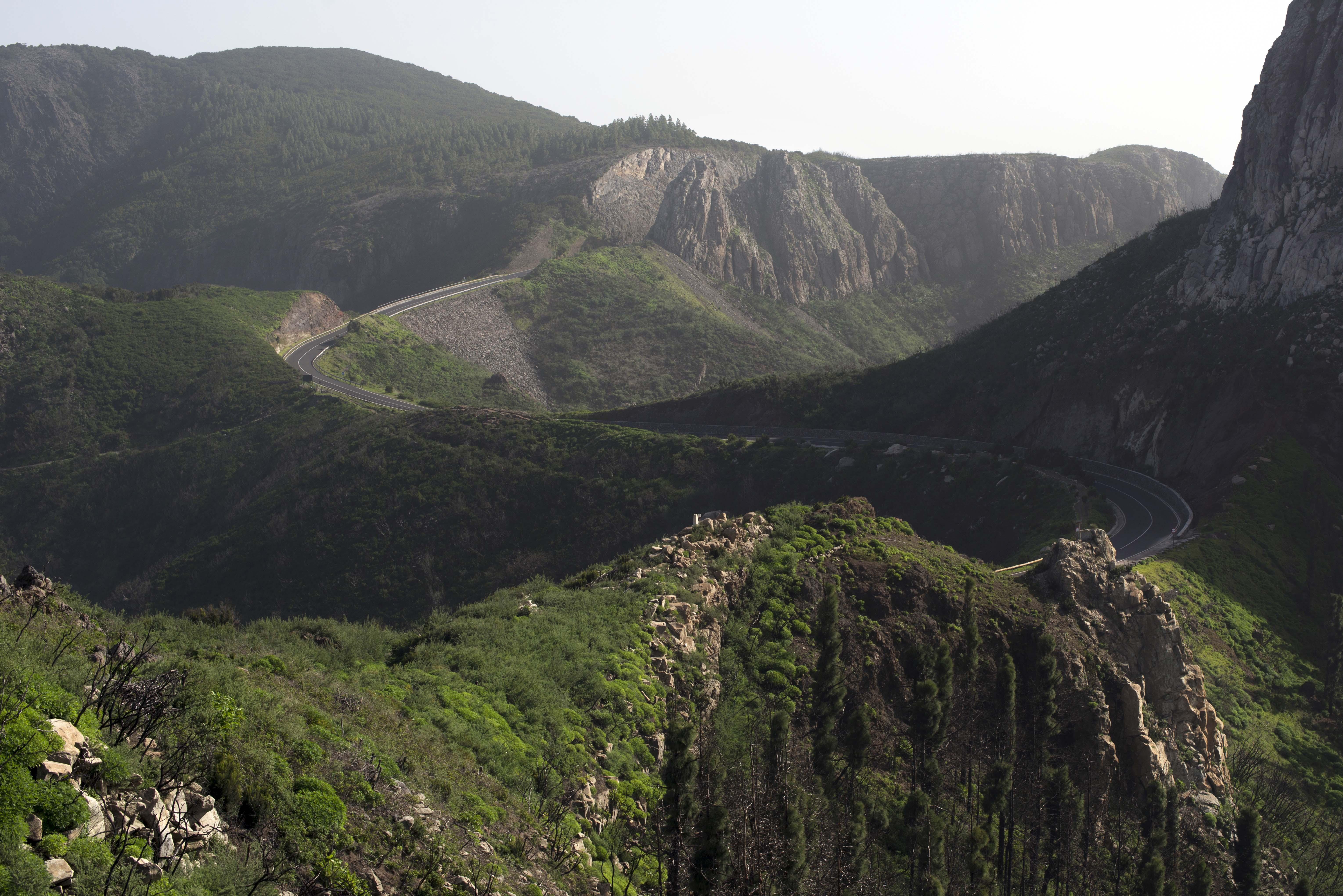 LaGomera_MountainRoad