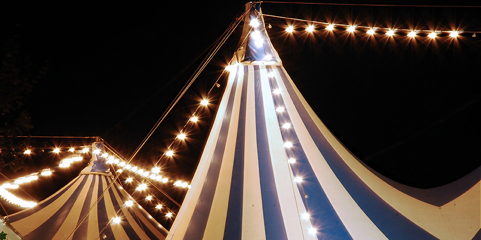 Adult Summer Circus Camp
