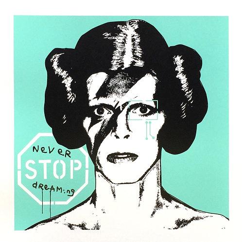 Princess Bowie 1.4 (Mint)
