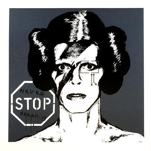 Princess Bowie 1.11 (Dark Grey)