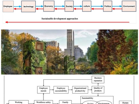 Kenya Sustainable Cities - Ecology as Environmental Health and Safety