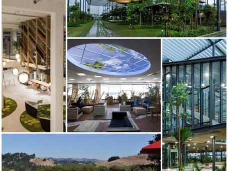 Kenya Sustainable Cities - Life Sciences and Industrial Engineering