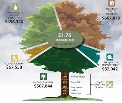i-Tree Calculator: A Tool For Creating Convergence On Natural Capital Financing