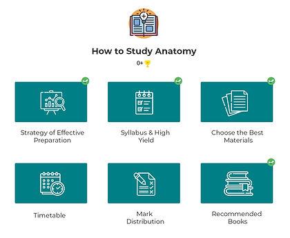 How-to-study-fmge.jpg