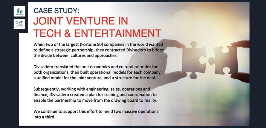 Joint Venture Case Study