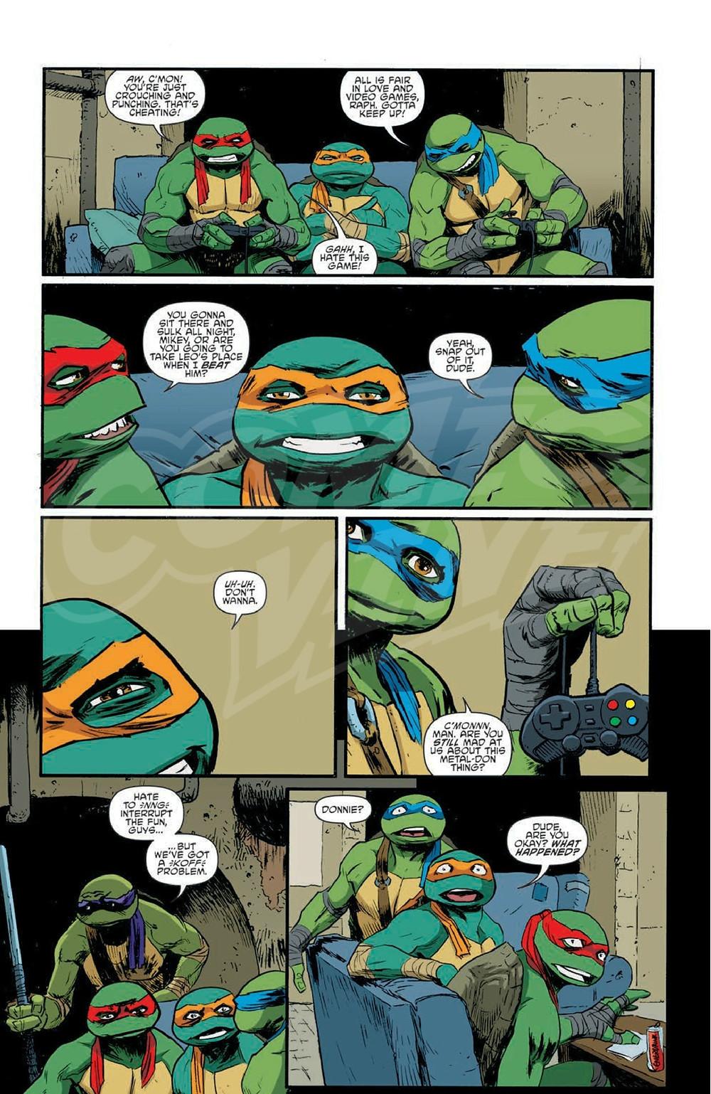 fusi-turtles5