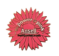 AnsellAORN_Pin-small.png